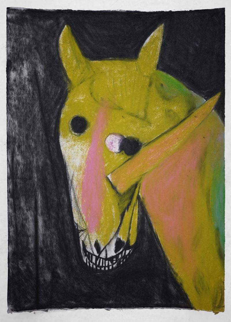 green-licorne
