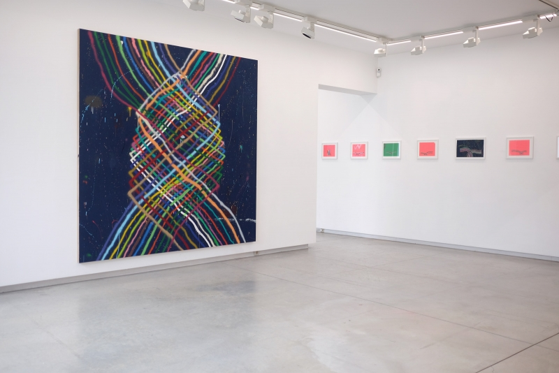 alicia-McCarthy-alice-gallery-11